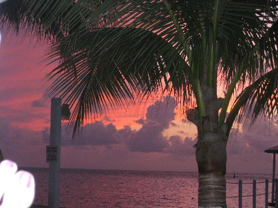Hotel Cozumel and Resort: the sky is really purple