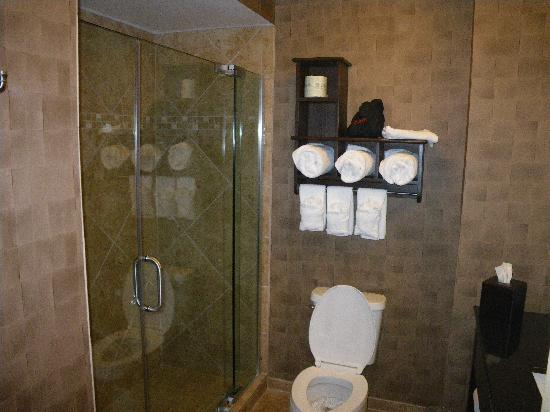 Hampton Inn & Suites - Paso Robles: Nice bathroom with shower