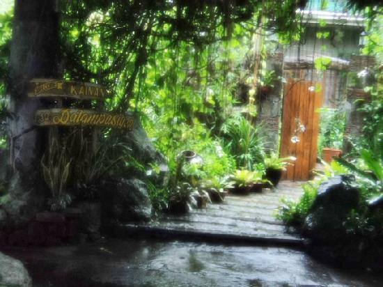 Luzon, Filippinerne: secret garden