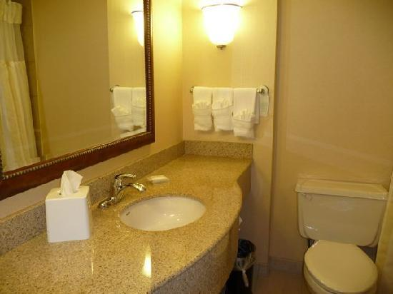 Hilton Garden Inn Saskatoon Downtown: Room 1204 Bathroom