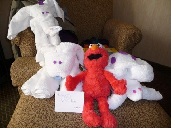 Hilton Garden Inn Saskatoon Downtown: Towel Animals!