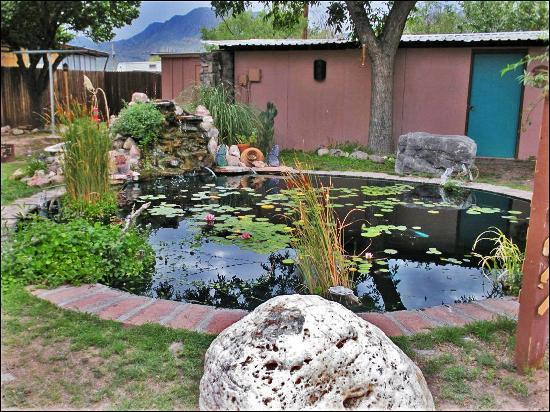Mountain Valley Lodge & RV Park: The Koi pond