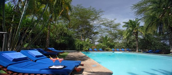 Lion Hill Swimming Pool Picture Of Sarova Lion Hill Game Lodge Lake Nakuru National Park