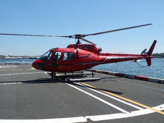 viator new york helicopter with Locationphotodirectlink G60763 D278212 I32697293 Liberty Helicopter Tours New York City New York on Things To Do On Fathers Day In Los Angeles moreover D773 14876P1 together with D828 26504P13 as well D687 5024MANSKY also D828 16493P165.