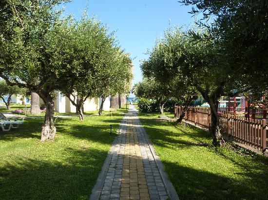 Tholos, Grecia: Allée de l'hôtel vers la plage