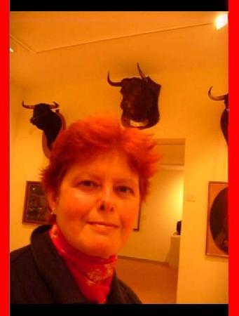 Bullfighting Museum : teste imbalsamate dei tori che hanno fatto la storia
