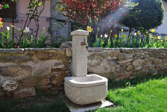 Campino: la fontana
