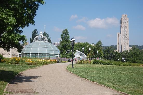 Schenley Park: The View from Phipps to University of Pittsburgh