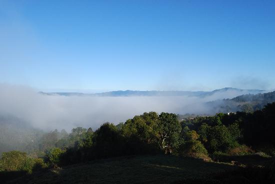 Artisan Spa Views Bed & Breakfast: Morning Fog :)