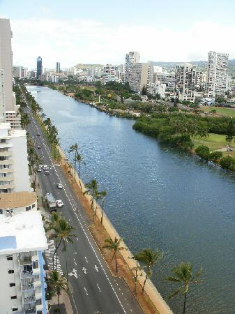 444 Nahua: View from the rooftoop looking mauka