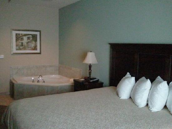 Country Inn & Suites By Carlson, Asheville West (Biltmore Estate): This was our room....we loved it!