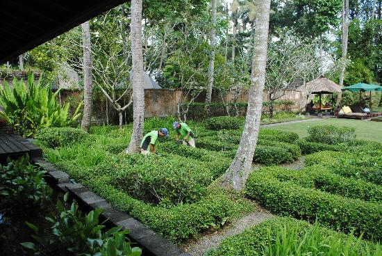 Puri Tupai: Garden