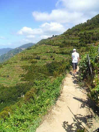 La Posada Ristorante & Camere: Trail #6- winds up, up, up along the ridge then a rocky trail down; fantastic!