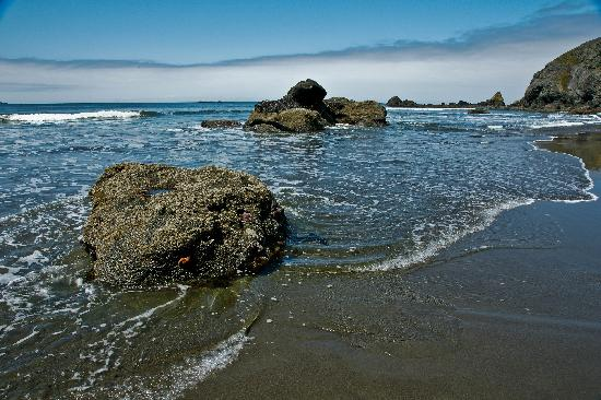 Cape Blanco State Park: The beach immediately south and below the Cape Blanco Lighthouse.