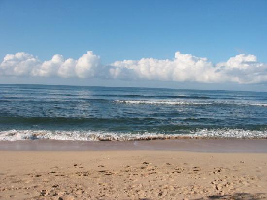 Nosara B&B Retreat: Morning on Pelada Beach