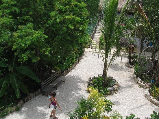 El Jardin de Frida: top view from the garden