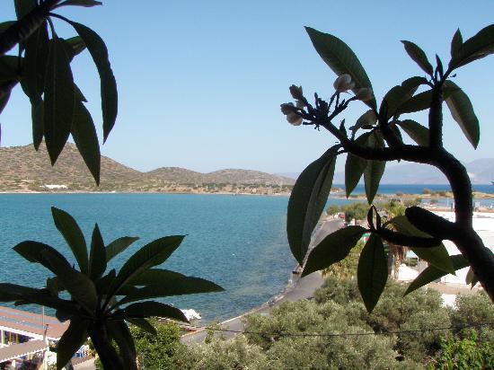 Akti Olous Hotel: Roof Pool Views