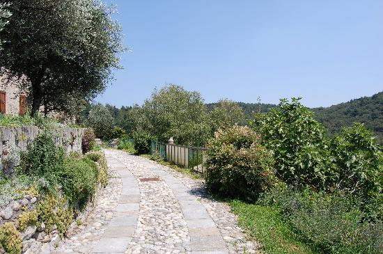 Drezzo, Italia: driving up to the house, surrounded by gardens and nature