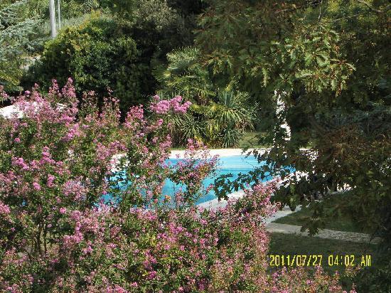 Porto Viro, Italy: piscina