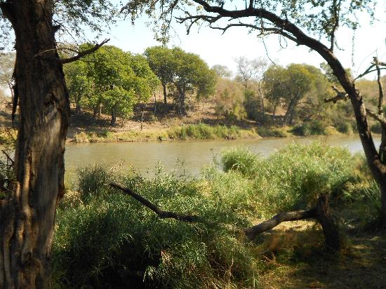 Timbavati Private Nature Reserve, South Africa: Wonderful view from the bedroom