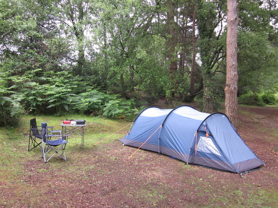 Ocknell and Longbeech Campsites: Camping in the Glades (1)