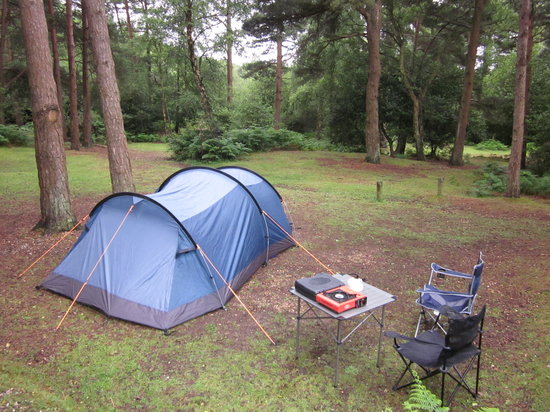 Ocknell and Longbeech Campsites: Camping in the Glades (2)