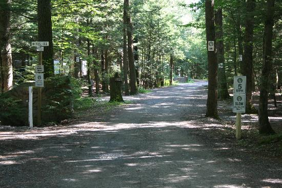 Rip Van Winkle Campgrounds: our roads