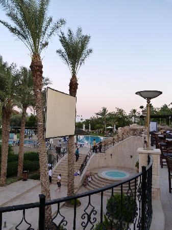 Oasis Hotel Jericho: View of the pool from the patio