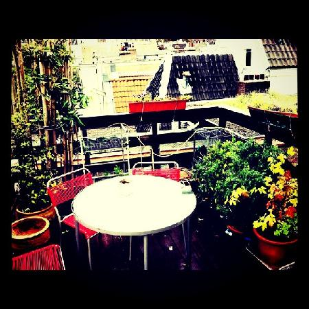 Bed and Net: Roof terrace