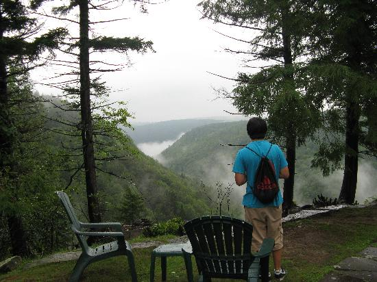 Blackwater Falls State Park Lodge: scenic view behind lodge