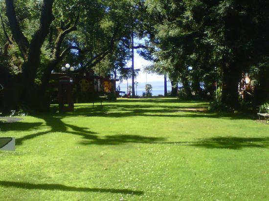 Featherbed Railroad Bed & Breakfast Resort: View toward Clear Lake