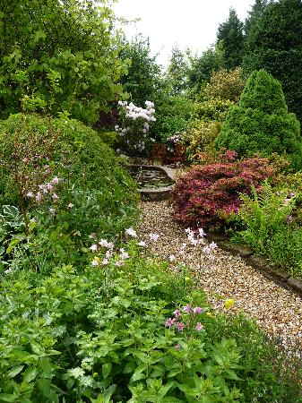 Kilronan House: the koi pond garden