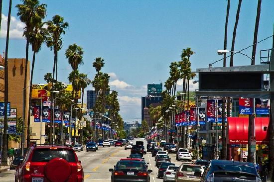 Los Angeles Sightseeing Tours Reviews