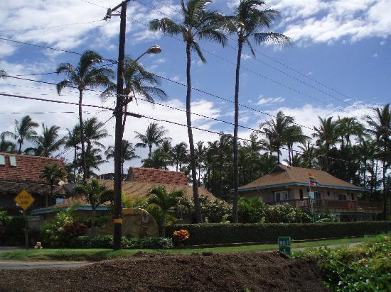 Maui Sunseeker LGBT Resort: View of the hotel from the beach across the street
