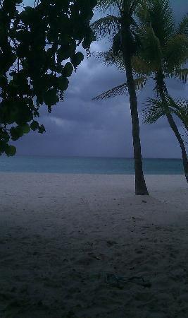 Whistling Bird Resort: beach