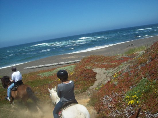 Horseback with Ricochet Ridge Ranch