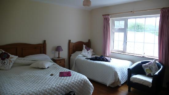 Salmon Leap Farm: Our lovely room