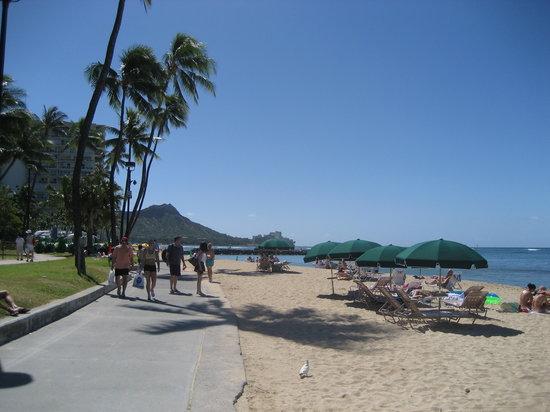 ' ' from the web at 'https://media-cdn.tripadvisor.com/media/photo-s/01/f3/40/52/waikiki-beach.jpg'