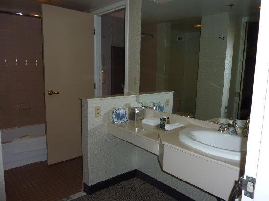 Hilton Auburn Hills Suites: Bathroom