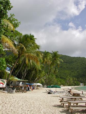 Myett's Garden Inn: Beach