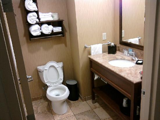 Hampton Inn & Suites New Braunfels: Spotless bathroom.