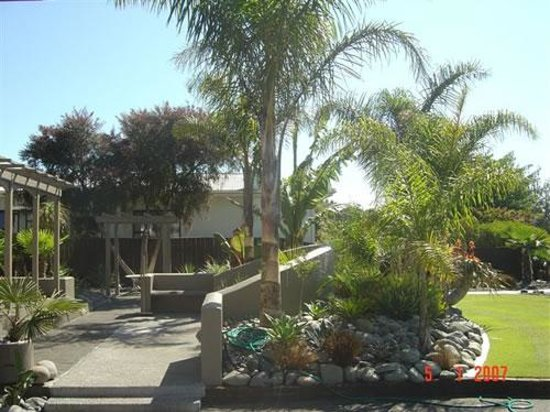 Paradise Palms Bed and Breakfast