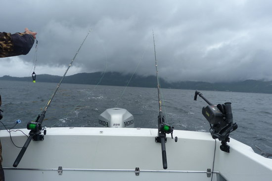 Trolling For King Salmon - Picture of AAA Sportfishing Co