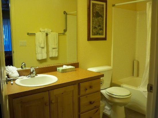 Worldmark St. George: Clean, average master bath