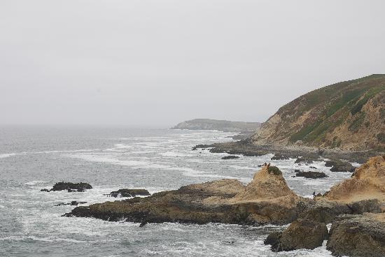 Bodega Bay, Californie : Ha! Bilss