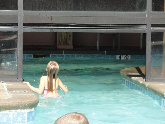 Super 8 Hermitage: Indoor/outdoor pool