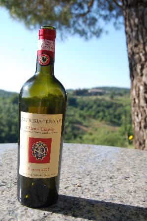 Fattoria Tregole: Tregole's wine w/ Tregole in background from our villa