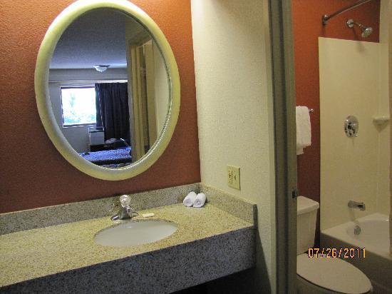 Red Roof Inn Utica: Vanity