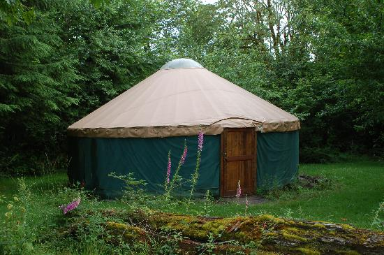 Eco Park: The rustic yurt we stayed in.