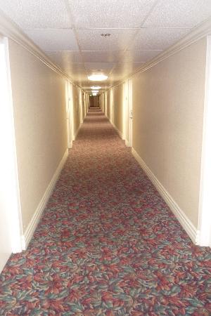Days Inn Glendale Los Angeles: Interior Hall 6th floor